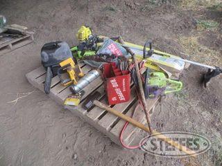 Asst chainsaws 1 jpg