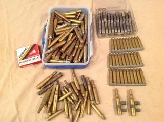 Assorted Casing & Reloads