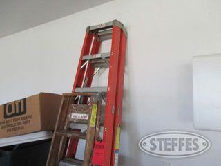 2 Step ladders 0 JPG