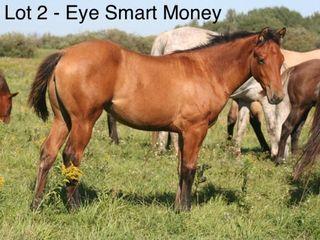 Lot 2 ~ EYE SMART MONEY - AQHA Dun Filly