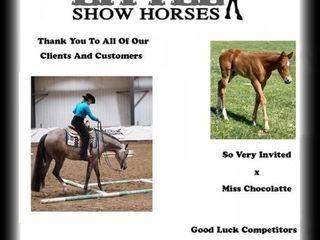 MANITOBA SUPER HORSE 50/50 ~ SPONSOR
