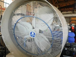 Schaefer shop fan