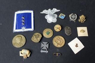 15 Military Badges & Pins