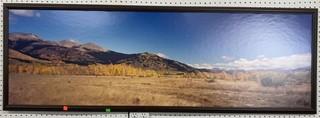 Framed Photo On Board 62x21.5