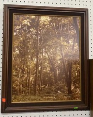 Framed Photo On Board Signed Mark Romesser