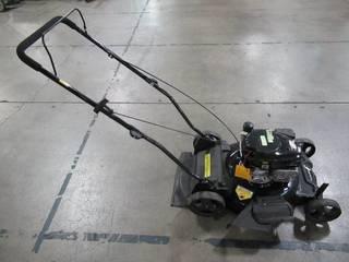 Powersmart 21 in. 170 cc Gas 2-in-1 Walk Behind Push Lawn Mower DB8621CR