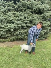 Goat - Evan Schlieman - Northstars