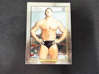 Batista WWE Superstar Trading Card Topps TurkeyRed
