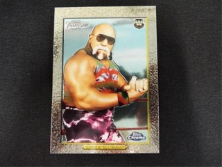 Superstar  Billy Graham WWE Trading Card