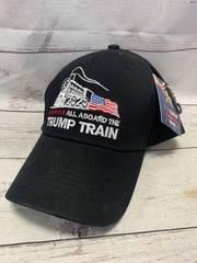 All Aboard the Trump Train Hat