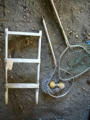 Boat Ladder & Fish Net