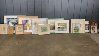 Approx 14 Framed Pictures