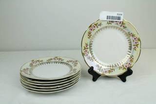 Iridescent brand China plates