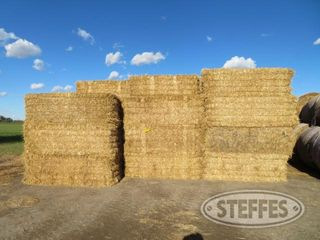 (72-Bales)-3x3x8-med--sq---wheat-straw-_0.JPG