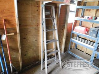 Werner-Step-Ladder_2.jpg