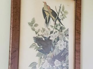 ANOTHER FRAMED BIRD PICTURE
