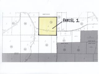 ABSOLUTE REAL ESTATE AUCTION 250 Acres Vacant Land - Selling In 2 Parcels- Willing, NY