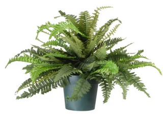 20  Green Fern Plant Fake