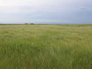689.15 +/- Acres - Ramsey County, ND