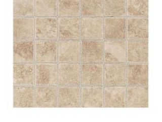 Carano Birch 12 in  x 12 in  x 8 mm Ceramic Mosaic Tile  10 sq  ft    case  BID IS PER BOX FOR 29 BOXES  boxes have not been fully inspected
