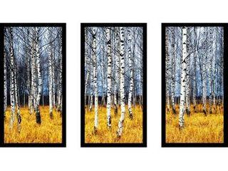 Birch Trees 2 Birch Trees Framed Plexiglass Wall Art Set of 3