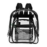 Medium Clear Transparent Backpack
