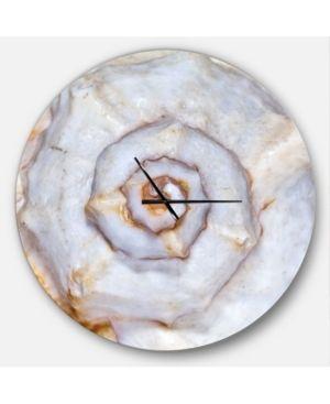 Designart  Great Skeleton of Sea Shell  Oversized Coastal Wall Clock  Retail 146 49
