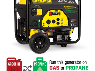 Champion 76533 3800 Watt Dual Fuel RV Ready Portable Generator with Electric Start