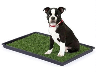 Prevue Pet Products Tinkle Turf for Medium Dog Breeds  29 1 2 Inch by 19 1 2 Inch