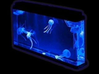 Fantastic Gift Jellyfish Tank With led lights Giant Jellyfish Aquarium Home Decor