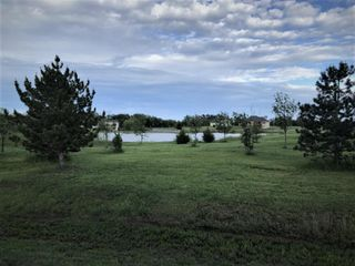4 51 Acre lot w pond   Trees Galore