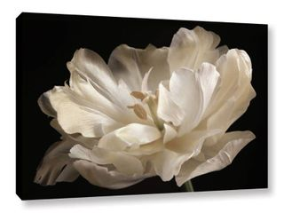 ArtWall Cora Niele s White Tulip Gallery Wrapped Canvas 32x48 Retail 143 49