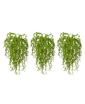 Senecio Artificial Succulent Set of 3