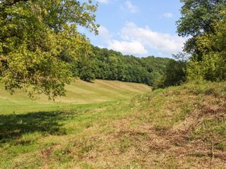 82 acres offered in tracts (from 7-25 acres each) or as a whole