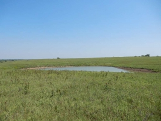 Spade Land Auction (311.86 ac in 2 tracts in North Lyon Co)