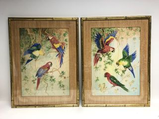 Wonderful Old Vintage Signed Pair of Framed Parrot Watercolor Paintings
