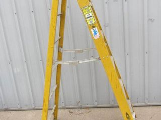 Werner Fiberglass 6ft Ladder