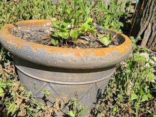 Clay Pot 14 in Diameter