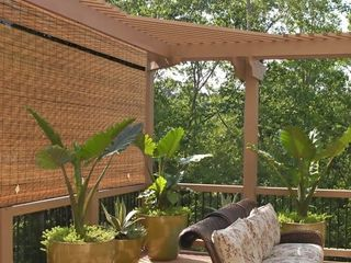 Radiance Imperial Matchstick Cord-Free Roll Up Shade Fruitwood Finish