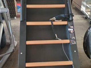 Jacob's Ladder Fitness Machine (SS-22)