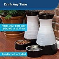 PetSafe Healthy Pet Gravity Food or Water Station  Automatic Dog and Cat Feeder or Water Dispenser  Small  Medium  large