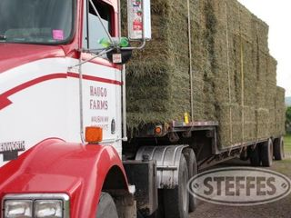 03 Hay   Forage  litchfield  MN  6 11 13 143 JPG