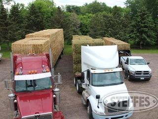 07 Hay   Forage  litchfield  MN  6 11 13 452 JPG