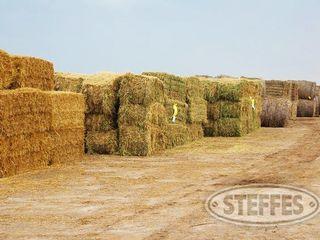 Post on Backside for ONlINE hay JPG