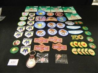 Girl Scout Patches 54  Key Chain