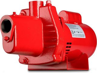 Red lion RJS 100 PREM 602208 Premium Cast Iron Shallow Jet Pump for Wells up to 25 ft  9 1 x 17 8 x 9 1 inches