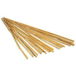 Hydrofarm HGBB6 6  Natural Bamboo Stake  pack of 25