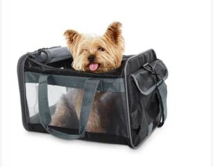 Grey Basic Pet Carrier