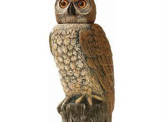 Dalen 18  Rotating Head Owl