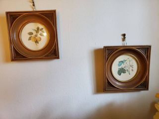 lot of 2 Small Wall Dexor Pieces  Fruit Prints